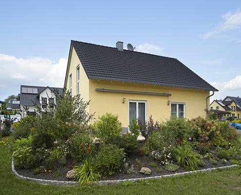 neu gestaltete Aussenanlage mit Grünpflanzen und Pflastersteinen