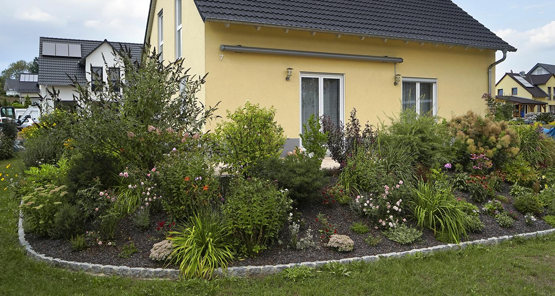 neu gestaltete Außenanlage mit Grünpflanzen und Pflastersteinen